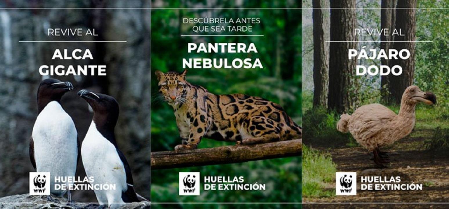 εξαφανισμένα είδη ζώων σε αναπαράσταση